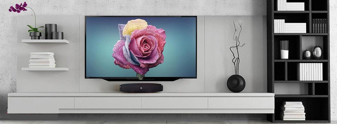 تلویزین شارپ 42 اینچ مدل42BD1X _تلویزیونFull HD شارپ 42 اینچ
